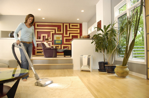Built In Central Vacuum Systems Cooper City Fl